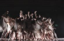 One week, three universities: celebrating Taiwan's dancers
