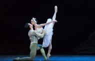 Humanising Odette: Jurgita Dronina in Hong Kong Ballet's Swan Lake