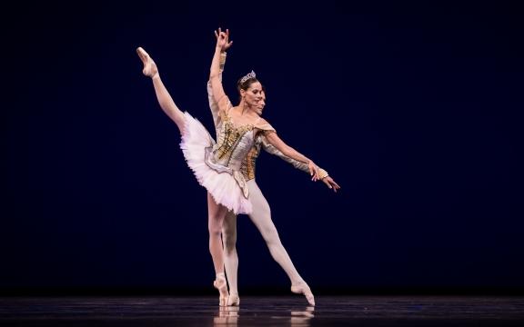 Saluting Dutch talent: Dutch National Ballet's Gala