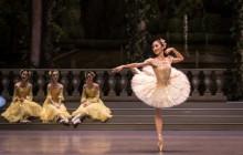 Rosa Park: a ballerina retires