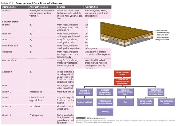 Dancer Wellness has plenty of excellent tables, charts and diagrams