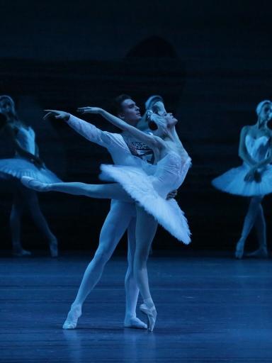 The Bolshoi Ballet's Swan Lake with Svetlana Zakharova and Denis RodkinPhoto Damir Yusupov