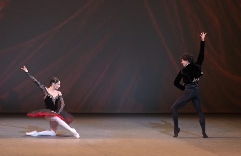 Tamara Rojo and Isaac Hernandez in Don QuixotePhoto Marc Haegeman