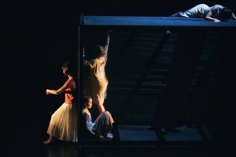 Memories seen through time and distance: Seed Dance Company in 907 Kilometers