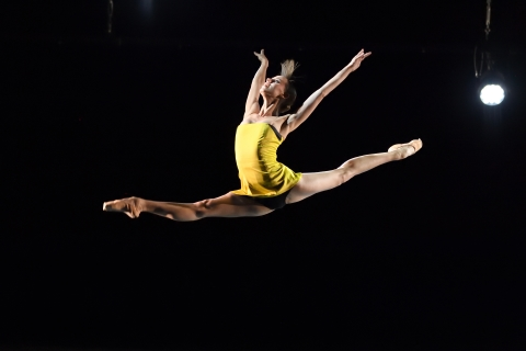 Stuttgart Ballet in Party Pieces selected by Reid Anderson