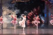 Birmingham Royal Ballet plans
