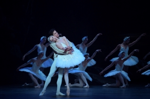 English National Ballet's Swan Lake casts its spell