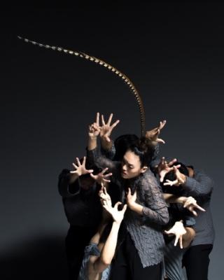 Lai Hung-chung's BoundlessPhoto Hung Dance