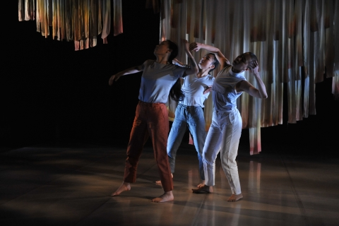 Showing the breadth of contemporary dance in Taiwan: CoDance 2019