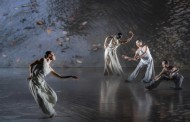 Exchange: Cloud Gate Dance Theatre meets TAO Dance Theater as Lin Hwai-min bows out