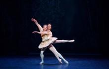 Seasonal joy: English National Ballet's Nutcracker