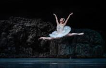 Regal ease: Kana Minegishi makes her mark in Singapore Dance Theatre's Swan Lake