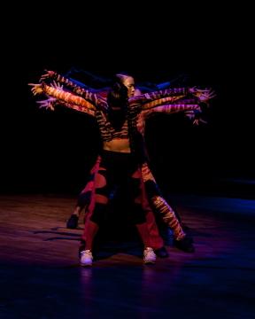KDV Dance Ensemble in Las Casas Invisibles