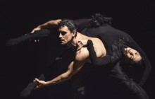 Fears and fragilities in a Nederlands Dans Theater 1 triple bill