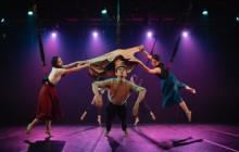 捕捉生命的時刻:三十舞蹈劇場2020相遇舞蹈節林依潔舞作《非飛人》