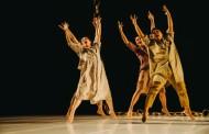 2020 Taiwan Dance Platform: Dance Together