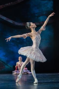 Momoko Hirata as the Sugar Plum Fairyin Birmingham Royal Ballet'sThe Nutcracker at The REPPhoto Johan Persson