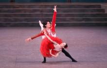 Exuberance and fine dancing in The Tokyo Ballet's Don Quixote