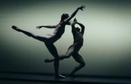 Extravagant and relentless: Ballet Vlaanderen in Palmos